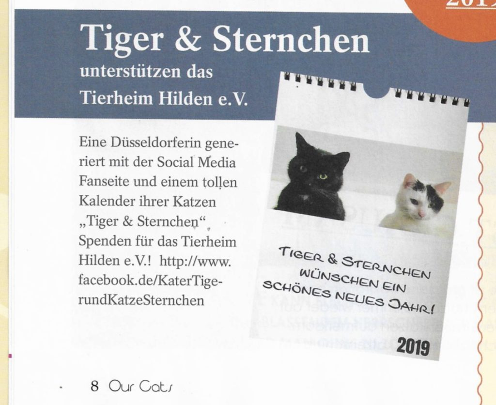 OUR Cats Magazin