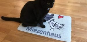 Kitty-Proved_Gadgets-Miezenhaus Fussmatte