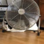 Tiger und Sternchen Abkühlen Hitze Sommer Kühlmatte Katze