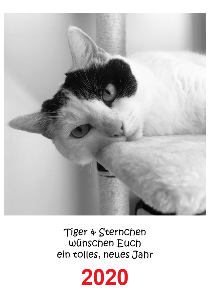 Kalender Cover Sternchen 2020