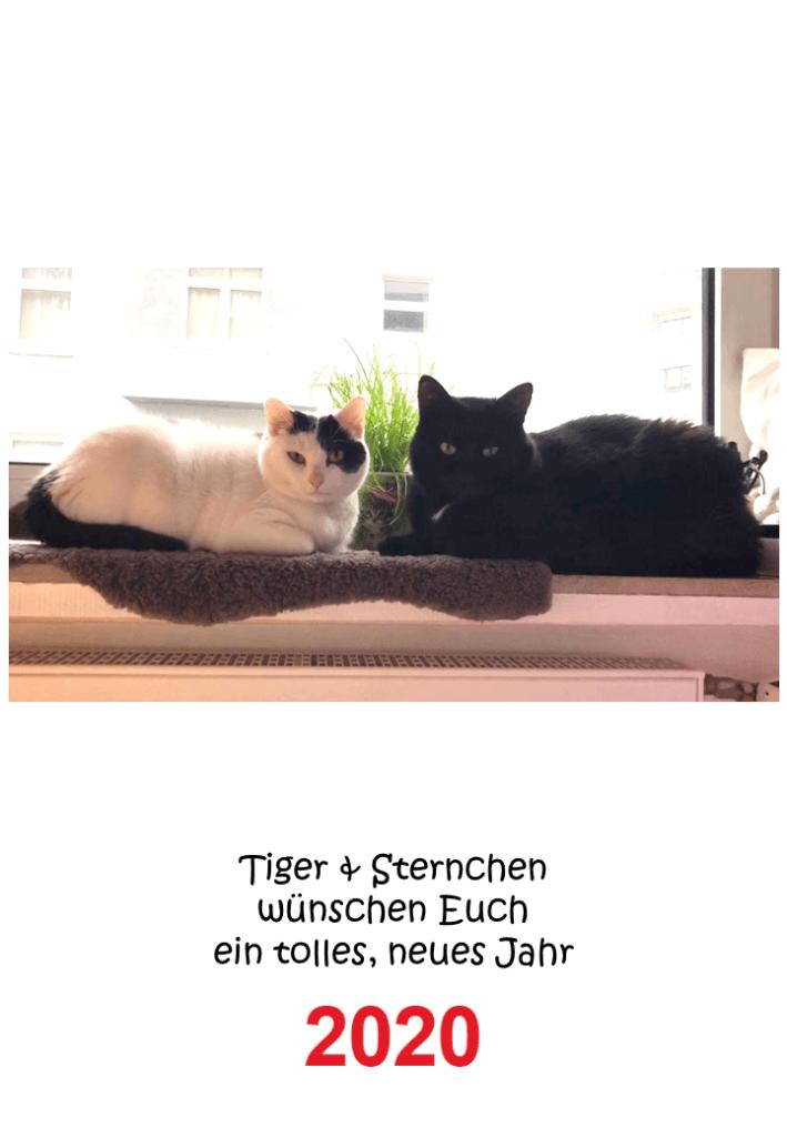 Cover Kalender Tiger und Sternchen 2020